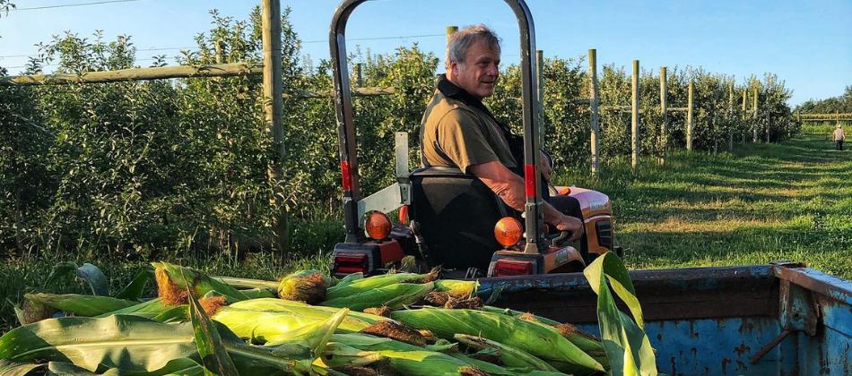 Family Tree Farm Customer Spotlight